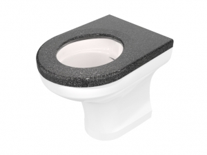 CWC-251 disabled height back-to-wall WC pan range